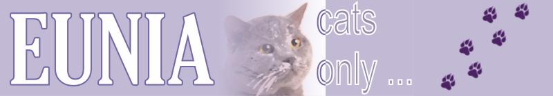 EUNIA - Cайт питомника британских кошек ЮНИЯ